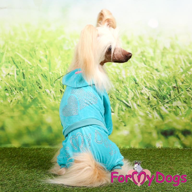 Afbeeldingen van ForMyDogs Floor