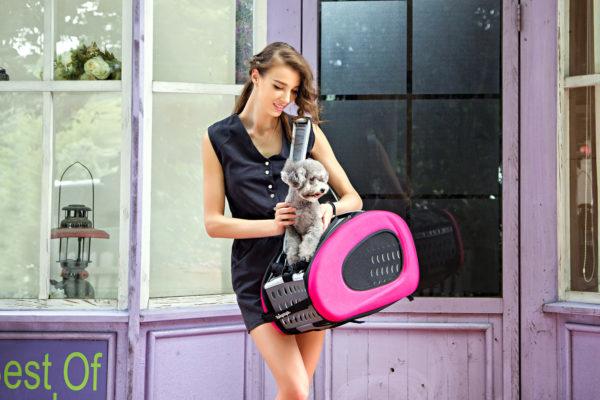 Afbeeldingen van InnoPet®Buggy 5 in 1  Pink
