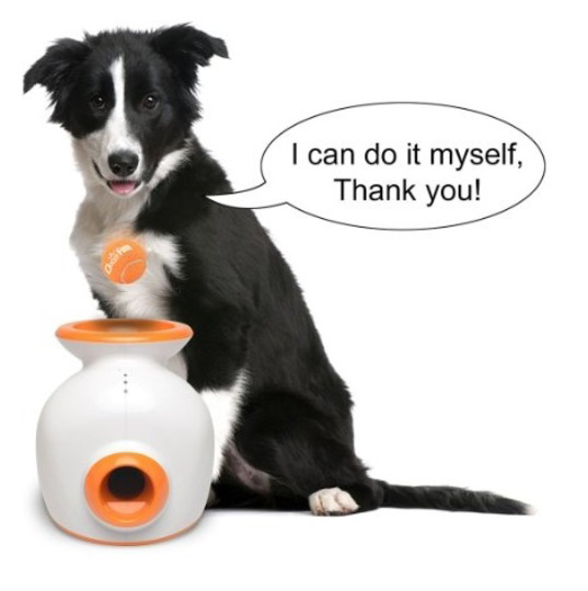 Picture of Doggy Fun Automatic Ball Launcher