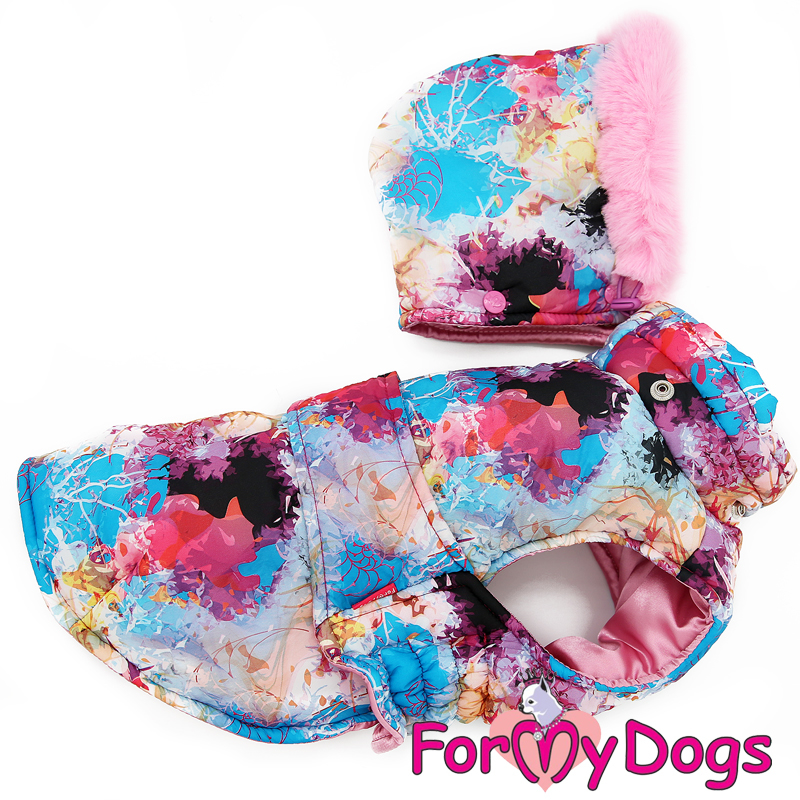 Picture of ForMyDogs Abygail