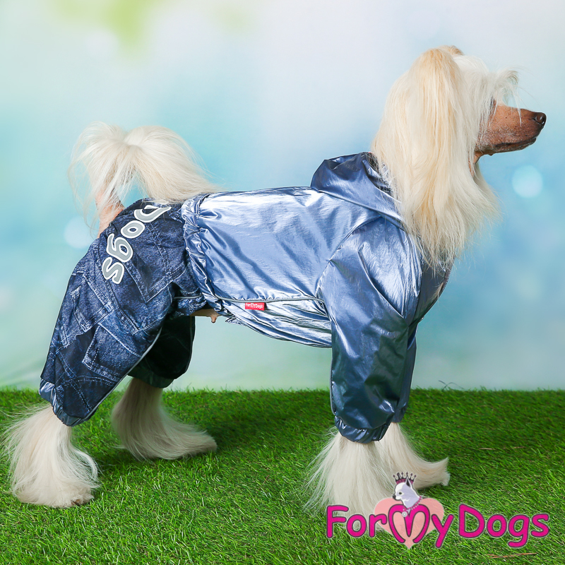 Picture of ForMyDogs Rayen