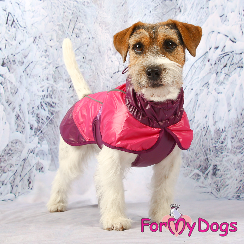 Picture of ForMyDogs Linda