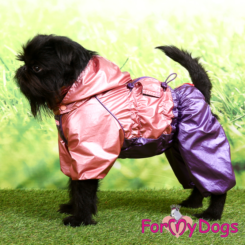 Picture of ForMyDogs Aalia