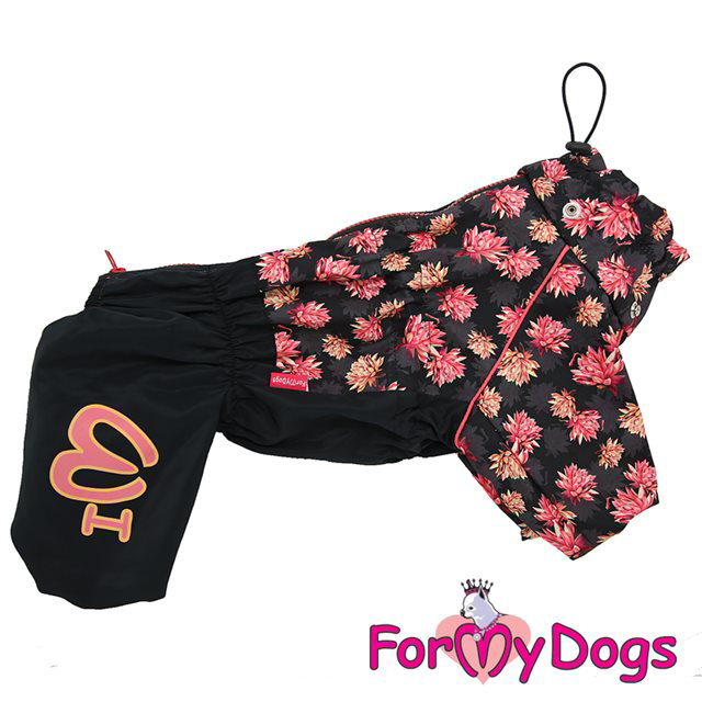 Picture of ForMyDogs  Baily