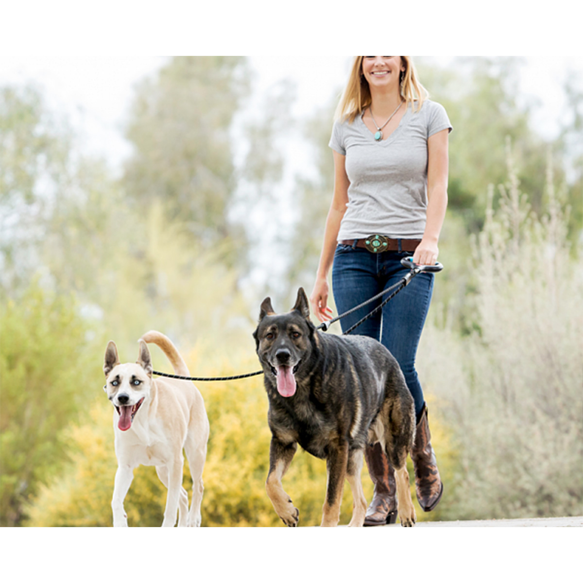 Picture of DUAL-DOGGIE DUO-RIEM MEDIUM/LARGE