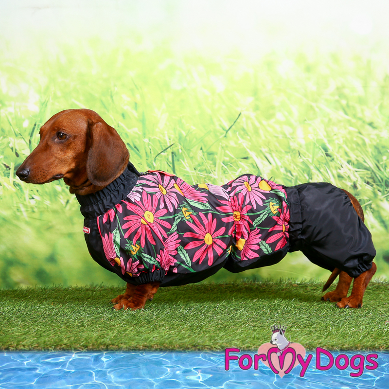 Picture of ForMyDogs Wies