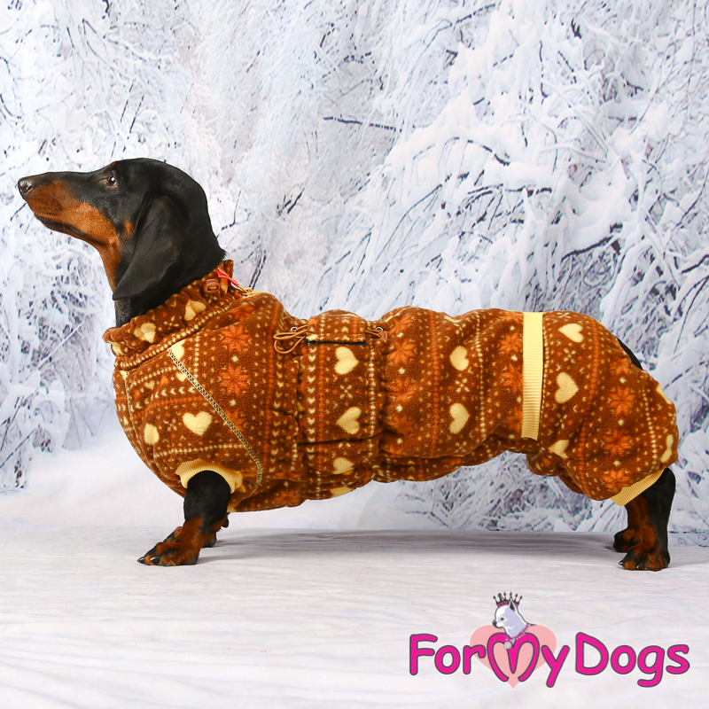 Picture of ForMyDogs Tymon
