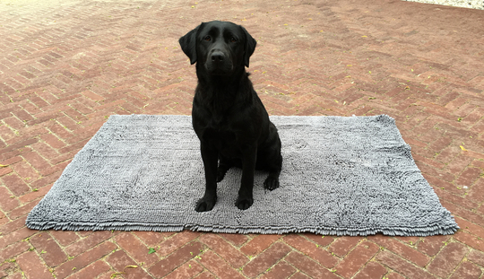 Picture of Doggy Dry Doormat L